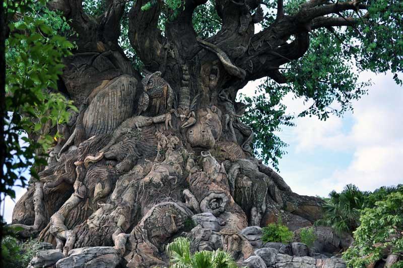 Animal Kindom Tree of Life
